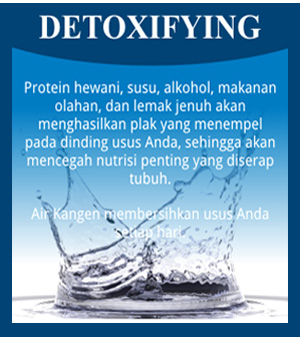 detoxifying kangen water